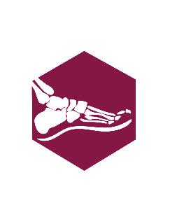 O&P_logo-04